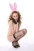 Lucie T Hot bunny istripper model